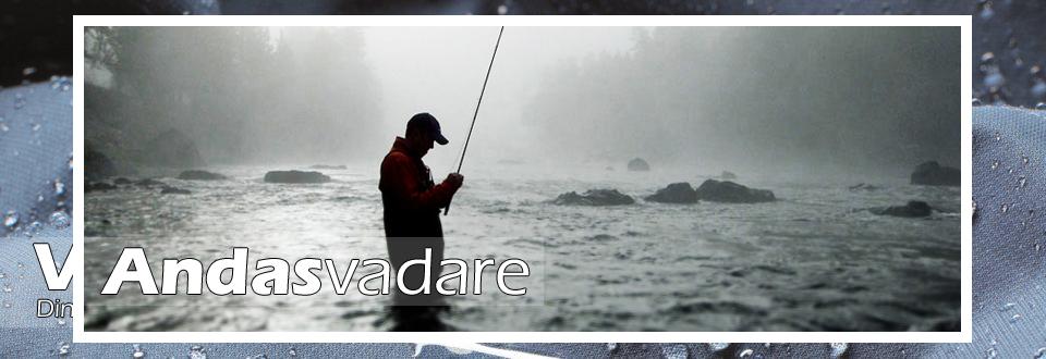 Andasvadare - Bild