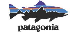 Andasvadare - Patagonia Logo